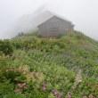夏の大山 三姑峰~ユートピア小屋