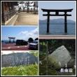 昨日の続きです  箱館山ゆり園