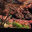 由布院温泉 佛山寺の紅葉 2017