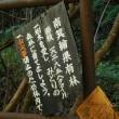 大泉川  大滝 (大ダルの瀧)