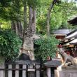 👫〜京都近代美術館:横山大観展…満足稲荷神社 180622