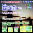 【数の性質】[数列][東京都市大学等々力中2017年]その3【算数・数学】[受験]【算太数子】