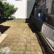 伸び過ぎた 敷地内の除草作業 茨城 牛久