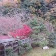 三江線の旅 (11月17日~18日)1日目