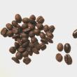 輸入コーヒーに異変 ベトナム産が首位のブラジル猛追!