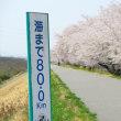 荒川サイクリング。熊谷のちょい先。