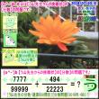 [う山先生・分数]【算数・数学】【う山先生からの挑戦状】分数639問目[Fraction]