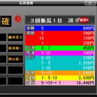 第51回ステイヤーズステークス他・検討