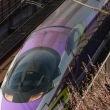 先週に続いて、梅花と新幹線