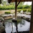 今月3回目の温泉