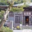 西伊豆へ研修旅行