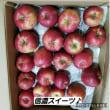 落花生の収穫はいつ?廃棄のリンゴ!