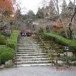 そうだ京都に行こう!大原の三千院と実光院