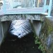 『馬場川沿いの路地』の最終回を書いてたら、玄関先の水鉢が凍りついていました…