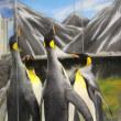 キングペンギンお家の事情6