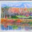 「水彩色鉛筆教室」で「白樺のある風景」を描きました