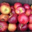 美味しいりんごを入荷しました。