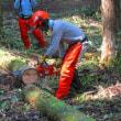 森づくり塾その2