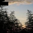 8月18日の夕日と雲と。