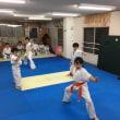 ジュニアAクラス 11/13(火) 拳手法特訓