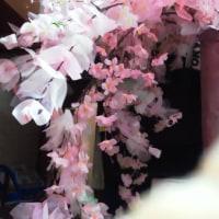 大倉山今年の桜!