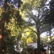 2017年 10月15日 「神戸 土地エネルギー(神社とかパワスポ)とかの活用ワークショップ」