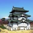 天守・桜・松・岩木山(弘前さくらまつり30)