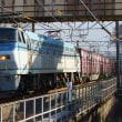 2018年2月17日 東海道貨物線 東戸塚 EF66-122 5094レ