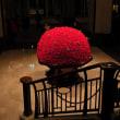帝国ホテルの赤い薔薇