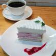 真っ白生ケーキ