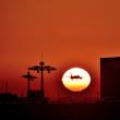 夕陽とのマッチング 成功‼️ 粘り勝ちの瞬間でした😁