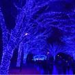 青の洞窟SHIBUYA