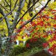 秋を懐かしむ