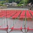 神津佐川の上流の海苔網