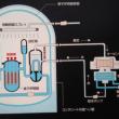 原子力格納容器