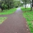 雨に濡れても歩きやすい道