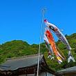 『季節の色』 鯉幟