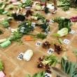 菜園日記 Vol.420 11月19日 「45周年&秋の収穫祭」