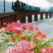 【古い写真】1993年09月 大井川鉄道