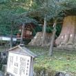 湯布院の森号