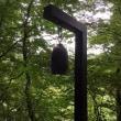 熊よけの鐘