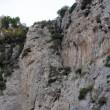 Athens-61  Korakofolia