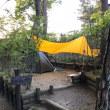 長野県 美鈴湖もりの国キャンプ場