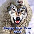 👻🐕🖤 ◯◯ Wolf wearing a Sheep Skin 羊の皮 をかぶっ た狼