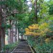 滝山公園 日野町
