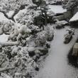 ☆珈琲タイム:天草にも雪・春分寒波