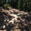 三波千羽海岸トレイルランコースをハイキング・・・