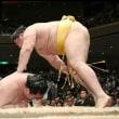 「遠藤、成長示す圧力=新小結で豪栄道に恩返し-大相撲夏場所」とのニュースっす。