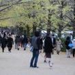 2017年11月12日 昭和記念公園へ行ってきました