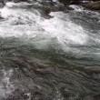 秋の渓流3
